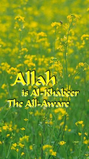 Allah is Al-Khabeer med