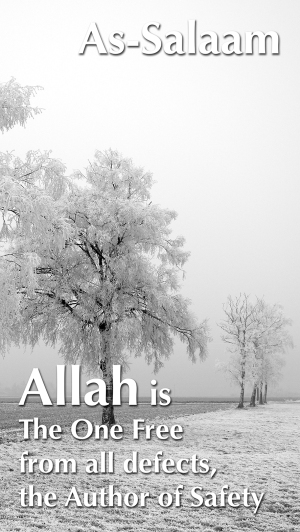 Allah is Free from all defects med