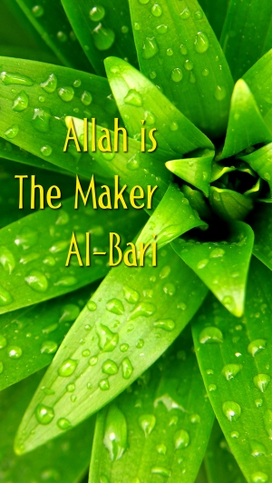 Allah is the Maker med