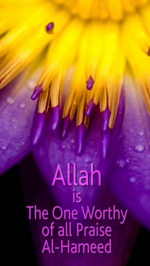 Allah is Worthy of All Praise med
